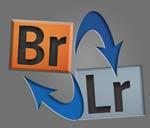 Stichworte gleichzeitig in Lightroom und Bridge oder anderen Programmen verwenden