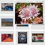 Lightroom Web Galerie LTD Fancy gratis zum Download