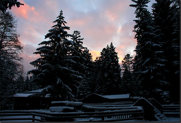 Winter-dunkel